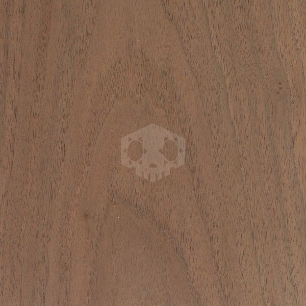 파일:black-walnut.jpg