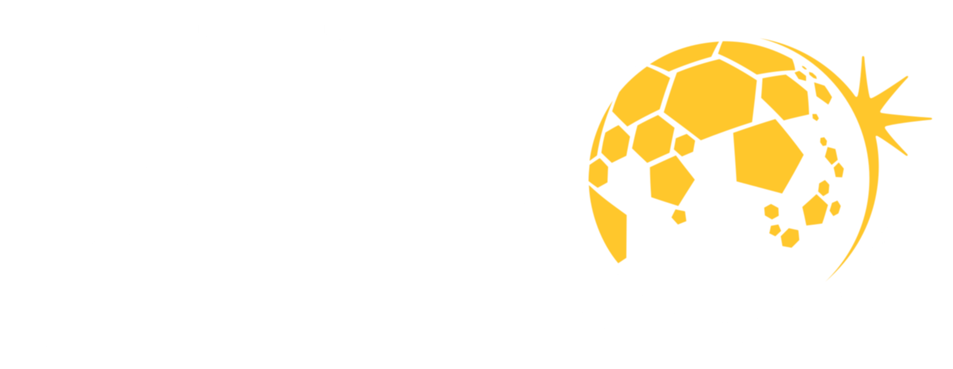 파일:Asian Football Confederation logo white.png