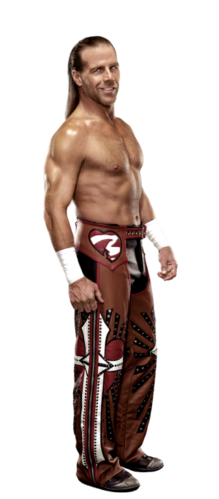 파일:shawn_michaels_stat.png