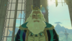 파일:BotW_King_Rhoam_Close_Up.png