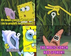 파일:external/img.memecdn.com/thou-shalt-not-disobey-the-magic-conch_c_3931299.jpg