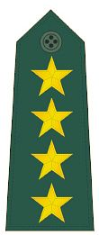 파일:external/upload.wikimedia.org/General_First_Class_rank_insignia_%28ROC%29_-_V.jpg
