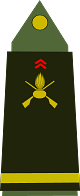 파일:external/upload.wikimedia.org/80px-Army-FRA-OF-01b.svg.png