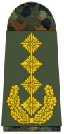파일:external/upload.wikimedia.org/341-General.png