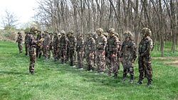 파일:external/upload.wikimedia.org/250px-Infantrymen_of_Light_Mixed_Battalion.jpg