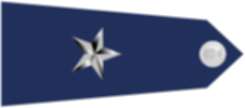 파일:external/upload.wikimedia.org/US_Air_Force_O7_shoulderboard-horizontal.png