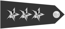 파일:external/upload.wikimedia.org/US_Air_Force_O9_shoulderboard-horizontal.png