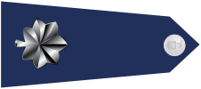 파일:external/upload.wikimedia.org/US_Air_Force_O5_shoulderboard-horizontal.png