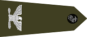 파일:external/upload.wikimedia.org/180px-US_Marine_O6_shoulderboard.svg.png