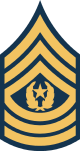파일:external/upload.wikimedia.org/80px-Army-USA-OR-09b.svg.png