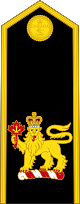 파일:external/upload.wikimedia.org/80px-Royal_Canadian_Navy_%28Commander-in-Chief_of_the_Canadian_Armed_Forces%29.svg.png