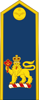 파일:external/upload.wikimedia.org/80px-Royal_Canadian_Air_Force_%28Commander-in-Chief_of_the_Canadian_Armed_Forces%29.svg.png