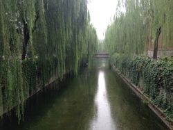 파일:external/upload.wikimedia.org/River_in_Tsinghua_University_2.jpg