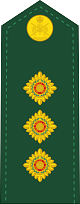 파일:external/upload.wikimedia.org/80px-Canadian_Army_OF-2.svg.png