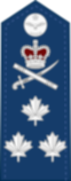 파일:external/upload.wikimedia.org/80px-Canadian_RCAF_%28shoulder%29_OF-8.svg.png