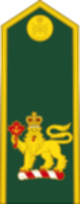 파일:external/upload.wikimedia.org/80px-Canadian_Army_%28Commander-in-Chief_of_the_Canadian_Armed_Forces%29.svg.png