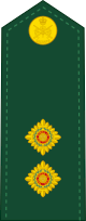 파일:external/upload.wikimedia.org/80px-Canadian_Army_OF-1b.svg.png