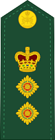 파일:external/upload.wikimedia.org/80px-Canadian_Army_OF-5.svg.png