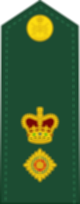 파일:external/upload.wikimedia.org/80px-Canadian_Army_OF-4.svg.png