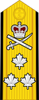 파일:external/upload.wikimedia.org/80px-Canadian_RCN_%28shoulder%29_OF-8.svg.png