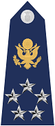 파일:external/upload.wikimedia.org/80px-US_Air_Force_O11_shoulderboard_with_seal.svg.png