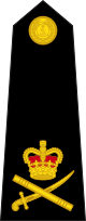 파일:external/upload.wikimedia.org/80px-British_Royal_Marines_OF-8.svg.png