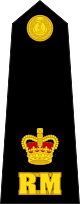 파일:external/upload.wikimedia.org/80px-British_Royal_Marines_OF-3.svg.png