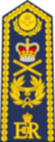파일:external/upload.wikimedia.org/80px-British_RAF_OF-10_%28ceremonial_shoulder_board%29.svg.png