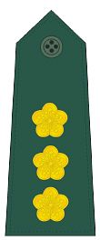 파일:external/upload.wikimedia.org/Colonel_rank_insignia_%28ROC%29_-_V.jpg