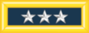 파일:external/upload.wikimedia.org/183px-Army-USA-OF-08.svg.png
