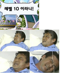 파일:external/upload.inven.co.kr/i0339467217.png