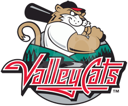 파일:external/s20.postimg.org/valleycats.png