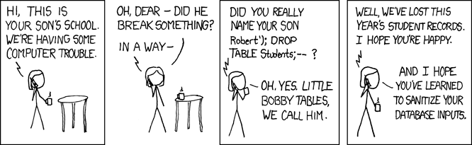 파일:external/imgs.xkcd.com/exploits_of_a_mom.png