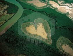 파일:external/www.lovethesepics.com/Heart-Shaped-Mangrove-Voh-New-Caledonia.jpg