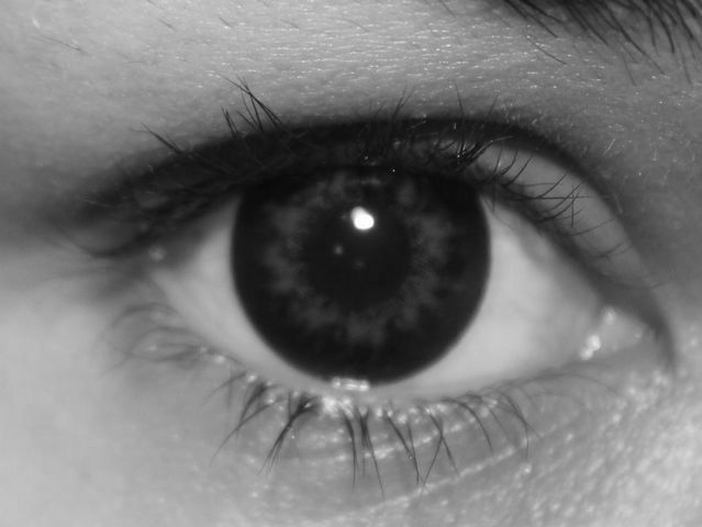 Image Result For Color Contact Lenses
