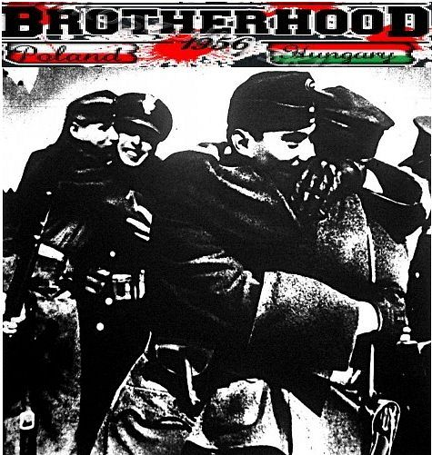 파일:Hungarian-Poland_Brotherhood.jpg