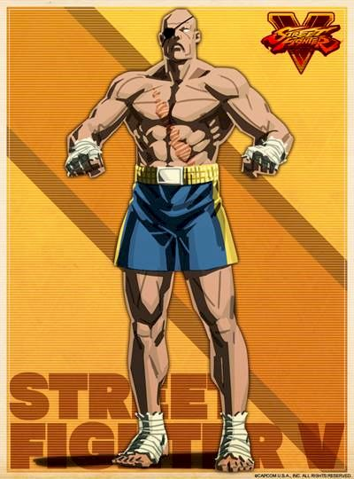 파일:Sagat_SFV_Shadaloo C.R.I._Profile_Artwork.jpg