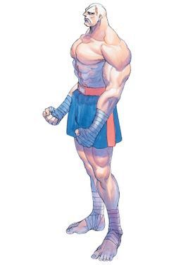 파일:Sagat_Super Street Fighter II X(Super Street Fighter II Turbo)_Artwork 1.jpg