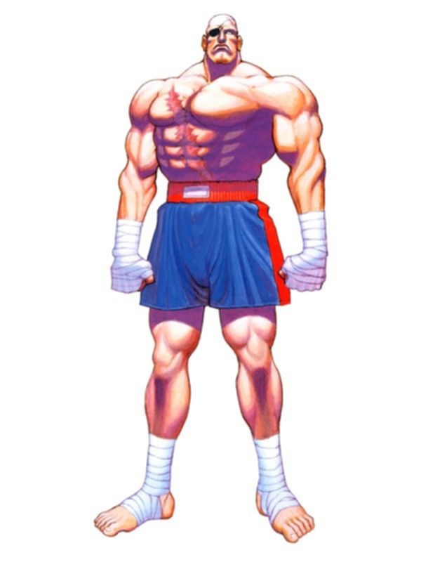 파일:Sagat_Super Street Fighter II.jpg