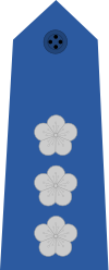 파일:Taiwan-airforce-OF-5.svg.png