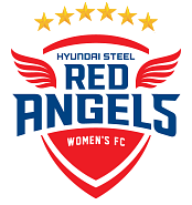 파일:Incheon Hyundai Steel Red Angels 6 stars.png