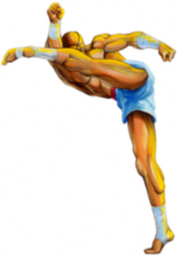 파일:Sagat_Street Fighter II_Artwork.png