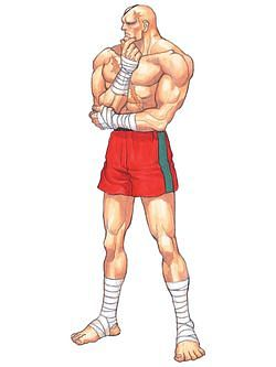 파일:Sagat_Street Fighter II Dash, Dash Turbo(Street Fighter II' Champion Edition, Hyper Fighting)_Artwork 1.jpg