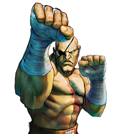 파일:Sagat_Street Fighter IV Series_Character Select.png