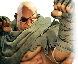 파일:Sagat_Street Fighter V_Character Select.png